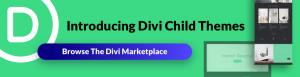 divi-ad-banner-02